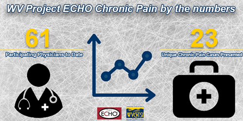 WV Project ECHO Chronic Pain by the numbers- 61 participating physicians to date, 23 unique chronic pain cases presented