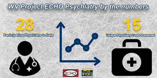 WV Project ECHO Psychiatry by the numbers- 28 participating physicians to date, 15 unique psychiatry cases presented
