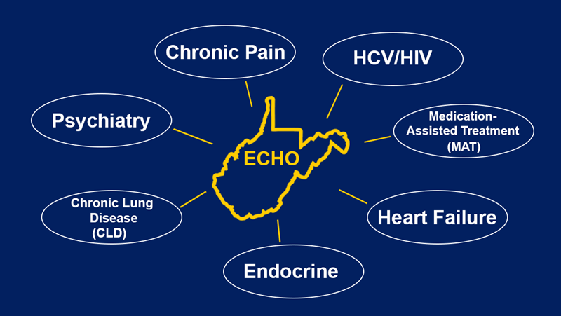 List of ECHO projects: Chronic Pain, HCV/HIV, Medication Assisted Treatment, Heart Failure, Endocrine, Chronic Lung Disease, Psychiatry